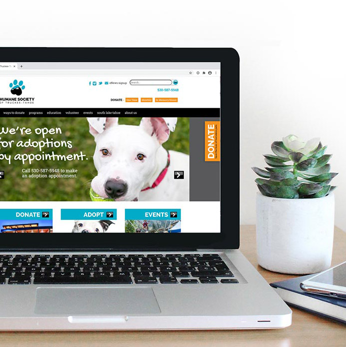 Humane Society of Truckee Tahoe web design
